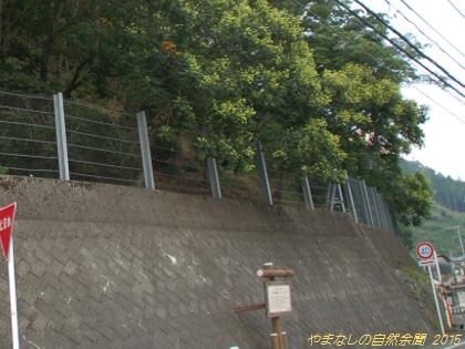 150802mokugenji02.jpg