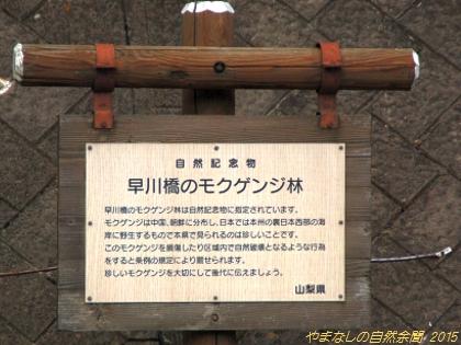 150802mokugenji03.jpg