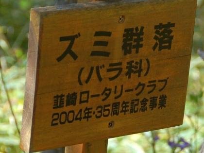 101011zumi04.jpg