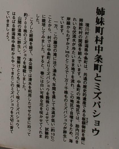 120520mizubasho04.jpg
