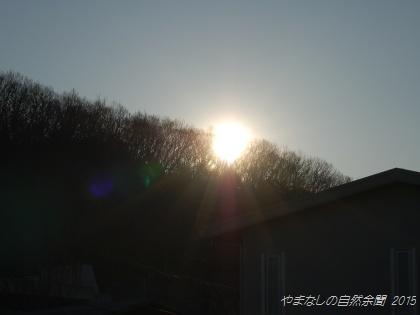 150311koori03.jpg